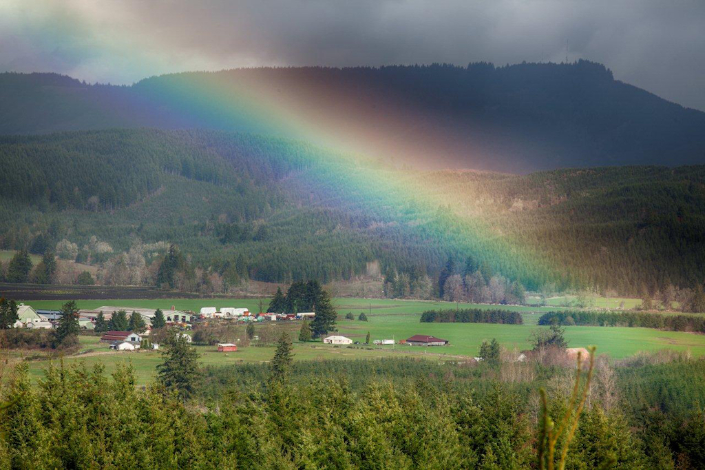 Rainbow Emerging over the Boistfort Valley – Honorable Mention, by Rollin Geppert